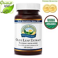 Olive Leaf Extract Экстракт Листьев Оливы (60капсул)