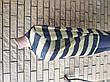 Батник, кофта унисекс брендовая коттоновая стрейчевая PUPICON, Турция, фото 4