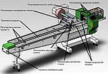 Флоупак горизонтальна пакувальна лінія CB-450S з технологією смарт-серво, фото 3