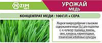 Микроудобрение Урожай Медь (Микроудобрение с высоким содержанием меди)