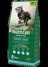 Nutrican Junior Large (Нутрикан) сухой корм для щенков крупных пород (курица) 15кг