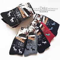 Теплі жіночі термо-шкарпетки з оленями Ruifa 6007-1. Розмір 35-38