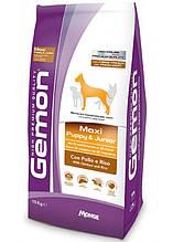 Gemon DOG Maxi Puppy & Junior для щенков собак крупных пород курица с рисом 15кг