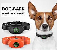 Электронный ошейник DOG300-BARK Orange антилай ip67, фото 3