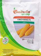 Семена кукурузы Оверленд  Syngenta, Голландия 500 г