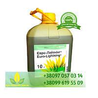 Евро-Лайтнинг гербицид