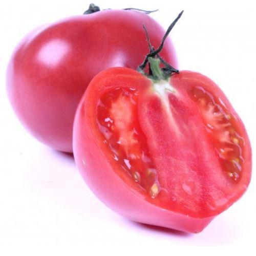 Семена томата Китару F1 (КС 14 F1), Kitano 500 семян   профессиональные