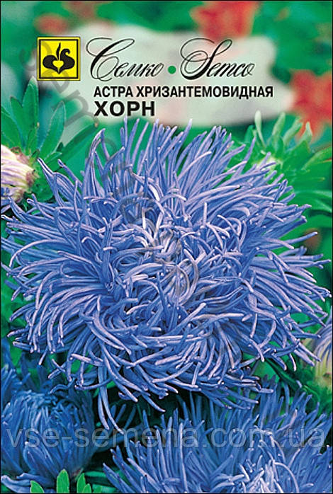 Астра Хризантемовидная Хорн 0,5 г (Семко)