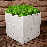 Білий кашпо з мохом