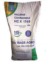 Насіння соняшнику НС Х 1749 під Гранстар, Seed Trade Agro