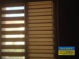 День ночь зебра ролеты с ткани бесплатная доставка, фото 3