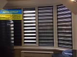 День ночь зебра ролеты с ткани бесплатная доставка, фото 2