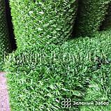 Зелений паркан декоративний, фото 2
