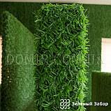 Зелений паркан декоративний, фото 3