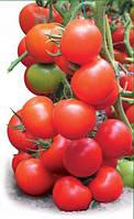 Семена томата Тайлер F1, Kitano 500 семян   профессиональные, фото 1