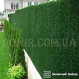 Зелений паркан декоративний, фото 6