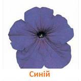 Петунія Фалкон F1 (колір на вибір)1000 шт., фото 5