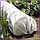 Парник 6 м 50 плотность из агроволокна, фото 6