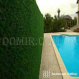 Зелений паркан декоративний, фото 7
