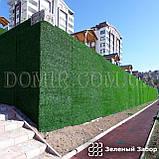 Зелений паркан декоративний, фото 8