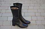Зимние женские сапоги из натуральной кожи на каблуке черные 134019, фото 2