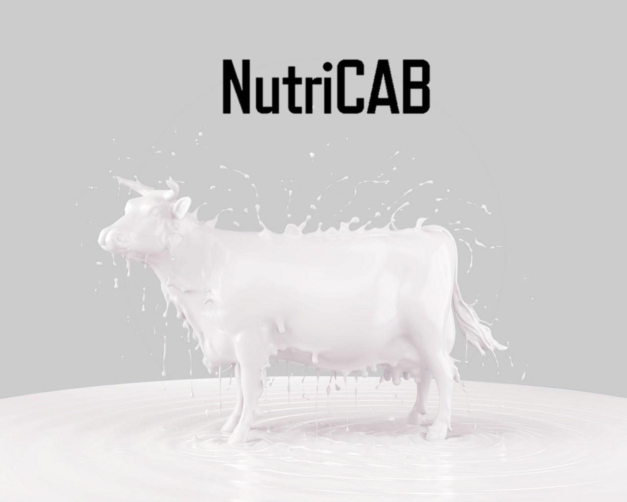 НутриКАБ - для предотвращения послеродовых парезов