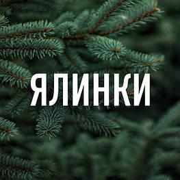 Ялинки