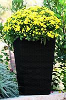 Горшок для цветов Keter Medium Rattan Planter Серый