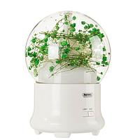 Увлажнитель воздуха (ароматическая лампа) Led лампа Remax Flowers Aroma Lamp RT-A700 Gypsophila