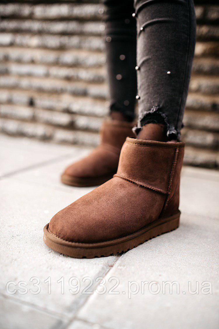 Жіночі чоботи зимові UGG Classic Mini (коричневі)