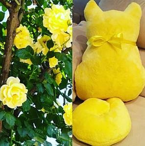 Подушка игрушка  Гордый кот, декоративная подушка, хэнд мейд