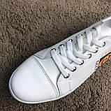 Gucci Logo Sneaker White ум, фото 7
