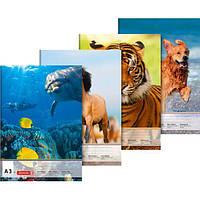 Альбом-склейка Brunnen  А3 10 листов 100 г/м2 для рисования mix (10479030)
