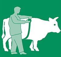 """Измерительная лента зоометрическая (рулетка) для измерения веса тела КРС и свиней """"METER"""" (Германия)"""