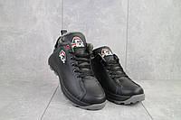 Зимние мужские ботинки из натуральной кожи Lions F3 черные