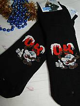 """Шкарпетки чоловічі """"Ок"""""""