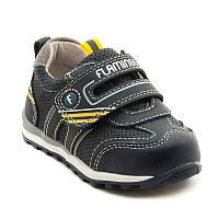 Туфли для мальчика Flamingo 91P-XY-1153.22-27
