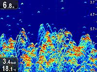 Эхолот Raymarine Dragonfly 5 Pro двухлучевой GPS CHIRP Sonar CHIRP DownVision, фото 10