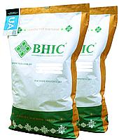 Семена кукурузы Гран 6 ВНИС 2020 ФАО 300