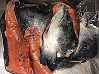 Суповой набор лосося (головы с хребтом), фото 1
