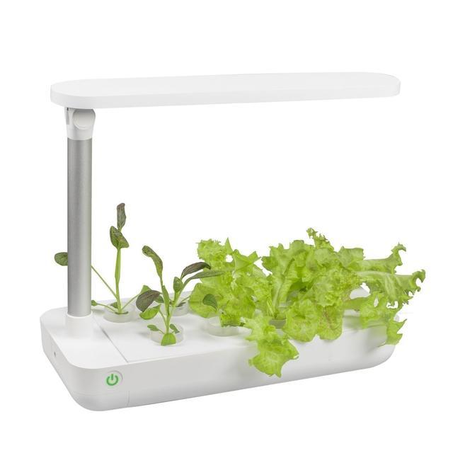 VegeBox Стол для внутренних работ на гидропонике