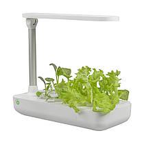 Vegebox™ by BioChef - Table Box - набір садовий для гідропоніки