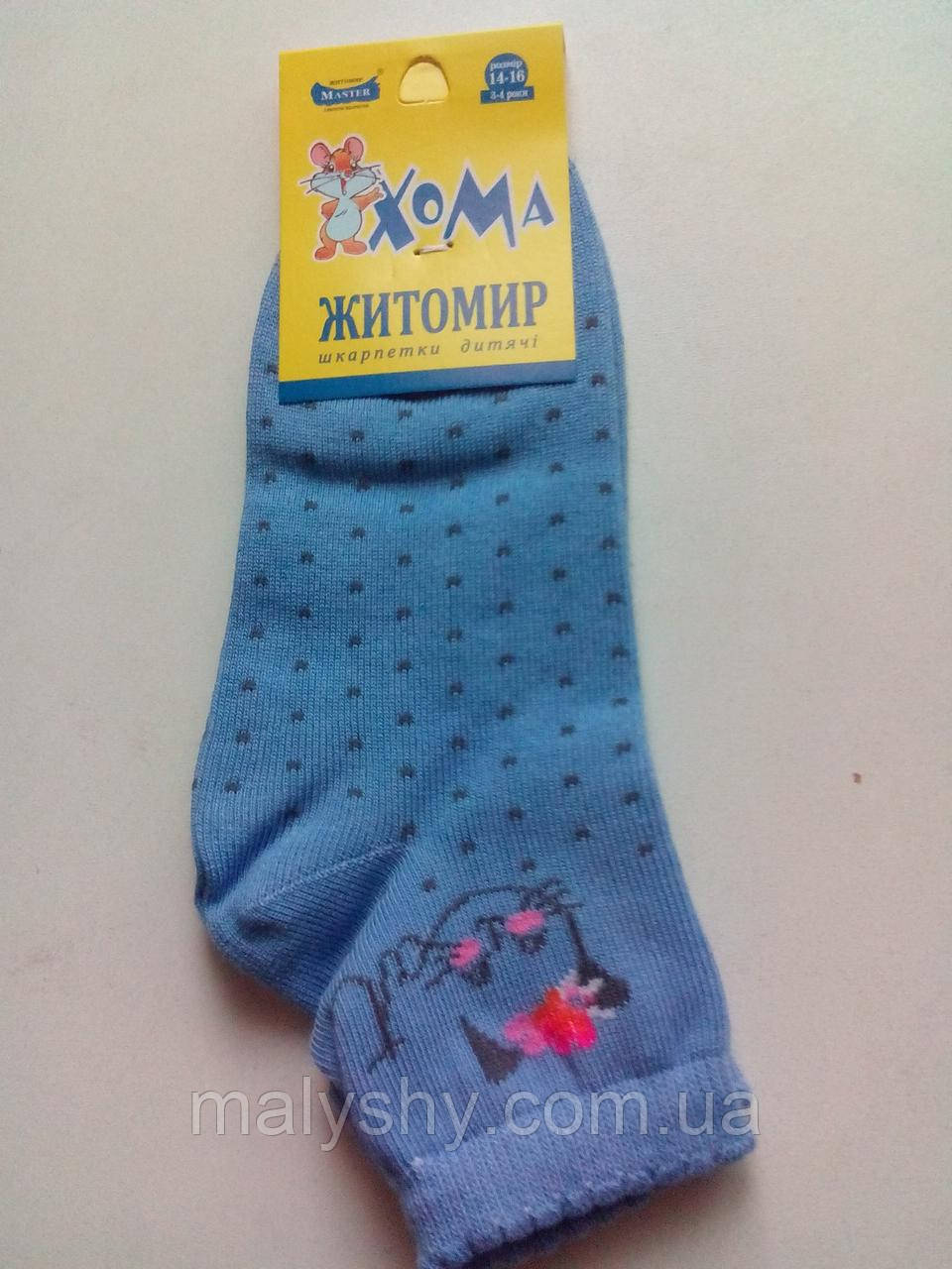 Детские носки демисезонные ХОМА ЖИТОМИР р.14-16 КОШКА-голубой /шкарпетки дитячі демісезонні, носочки