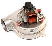 Вентилятор для котла GAZ 6000 24CRN