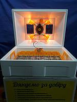 "Инкубатор ""Теплуша люкс"" 72 яйца (Автоматический переворот). Цифровой термометр+влагомер. Для всех видов птиц"