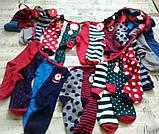 Яркие рождественские носки  от тсм Tchibo (Чибо), Германия, р.35-37, фото 2