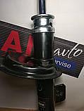 Амортизатор передний правый Citroen Berlingo 96-11 Peugeot 306 93-02 Partner 96-15 Берлинго Партнер, фото 2