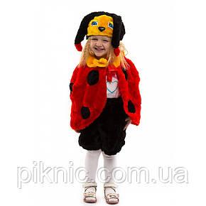 Костюм Божья Коровка для детей 3,4,5 лет. Детский новогодний карнавальный костюм, фото 2