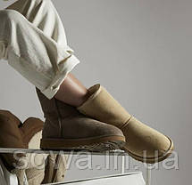 "Женские замшевые зимние угги  UGG CLASSIC SHORT II BOOT ""SAND"", фото 2"