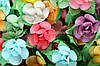 Вафельные цветы «Фиалка микс на двулистнике» 100 шт